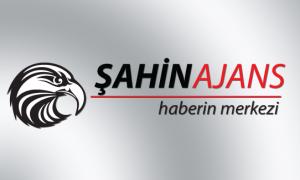 Şahin Ajans Logo Tasarım